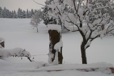 Angerlgut im Winter
