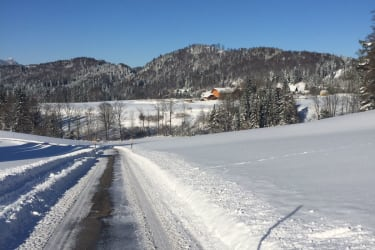 Winter in Ebenau