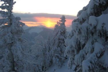 Winteraufnahme