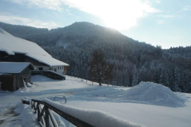Winterlandschaft-Stall