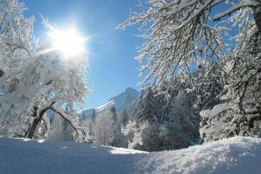 Winterlandschaft v. Bauernhof aus gesehen