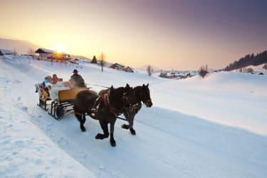 Eine romantische Pferdeschlittenfahrt