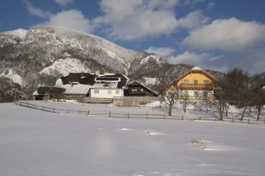 Bauernhaus-Gästehaus-Zuahaus