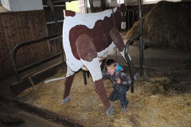 Auch unser Kleiner Sohn Michael versucht es schon das Melken