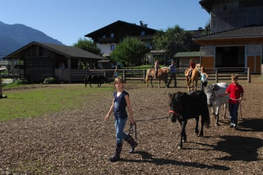 Pferdeparade
