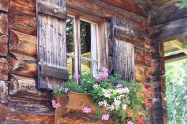 Grillhütte Blumenfenster