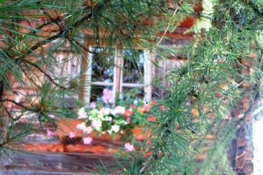 Grillhütte Blumenfenster u. Lärche