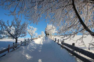 200 Meter Fußweg zum Berggasthof Winterbauer