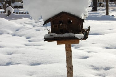 unser Vogelhaus mit Schneehaube