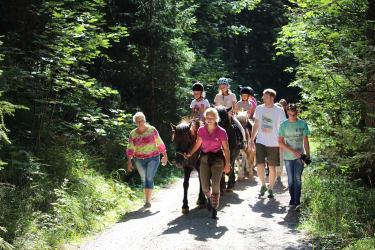 Spaziergang mit den Pferden
