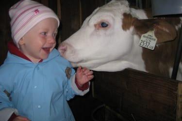 Tierfreundschaft