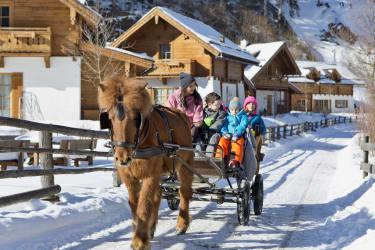 Ponykutschenfahrt für Kinder