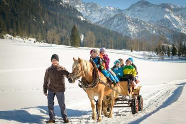 Kutschenfahrt im Winter