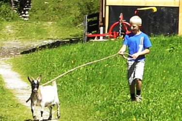 Johannes und die Ziege Lilly