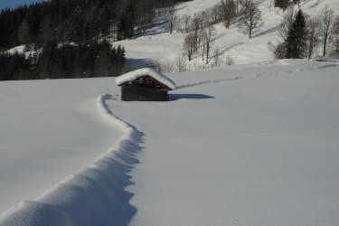 Zaun im Winterkleid