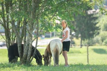 unsere Ponys beim Grasen