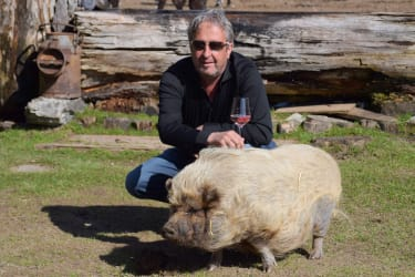 Jakob mit Schwein Sissi