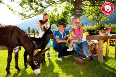 Familie mit Eseln