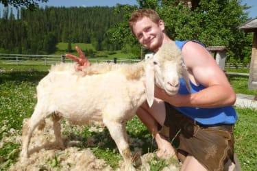 Markus beim Schafi schern ;-)