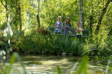 Fischen am Teich