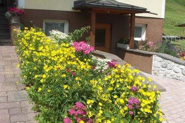 Blumen vor dem Haus