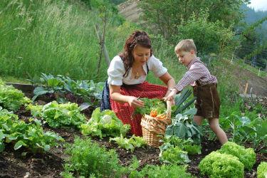 Unser Hausgarten !!!