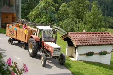 Eine Fahrt mit dem Maurachhof - Express !