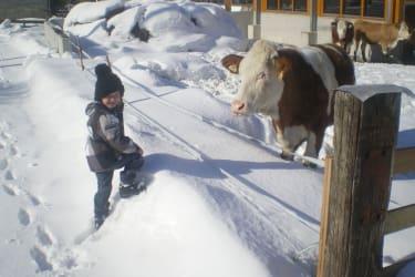 Tier und Kinder lieben den Schnee