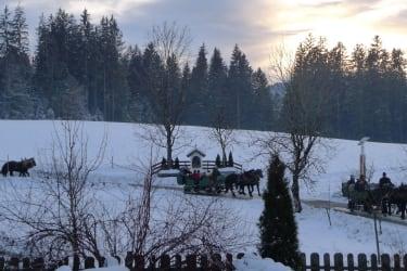 Eine Pferdeschlittenfahrt ist gratis im SAMO-Angebot