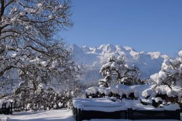Traumhaftes Winterpanorama