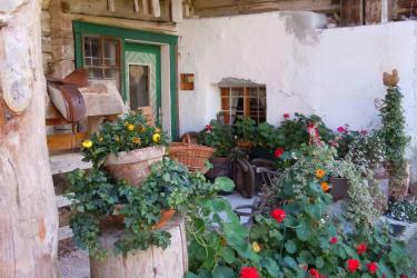 Bauernhof Wildau im Lammertal Westansicht