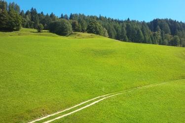 Balkonblick Ferienwohnung Gartenblick