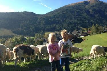 Thomas & Magdalena bei den Schafen