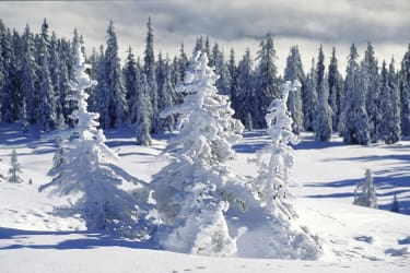 Winter in Mariapfarr © Ferienregion Lungau