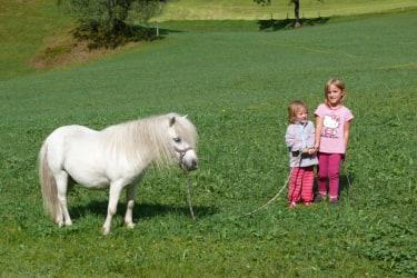 Kinder mit Amadeus