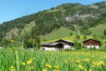 Der Steinbachhof vor Steinbachberg und Steinbachwand