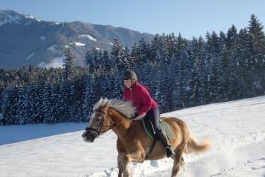 Winterausritt mit unserer Haflingerstute Senta