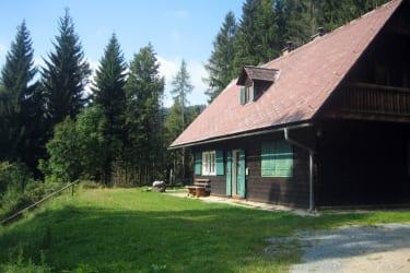Gemütliche Hütte, umgeben von Wald