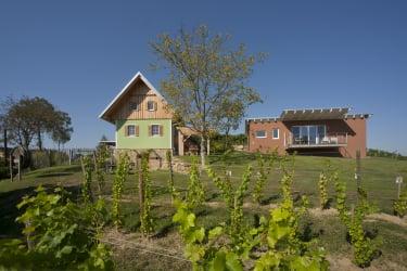 Ferienhäuser im Weingarten