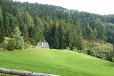 Blick auf die Hütte vom Zufahrtsweg