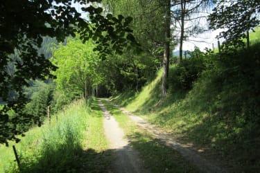 kilometerlange wunderschöne Spazierwege rund um das Haus
