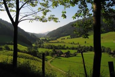 wunderbarer Blick ins Tal