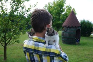 Lukas mit seinen Katzen