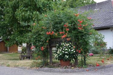 Willkommen am Ofenmacherhof in der Südsteiermark