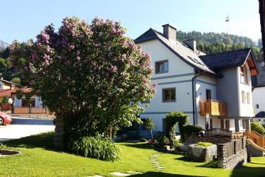 Fliederbusch mit Haus und Garten