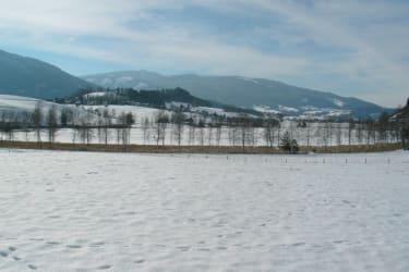 Winterlandschaft am Putterersee
