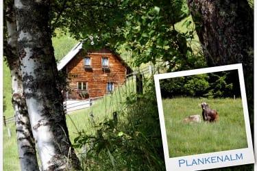 Plankenhütte