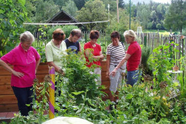 Garten Kräuterführung