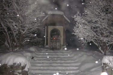 Weihnachtsfrieden in der Hofkapelle