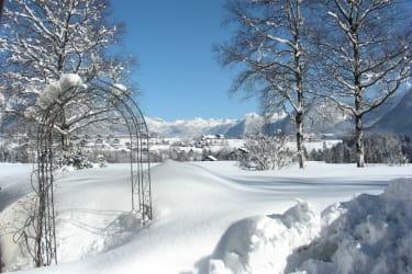 Rosenbogen im Winter